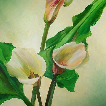 Three Calla Lilies by taiche