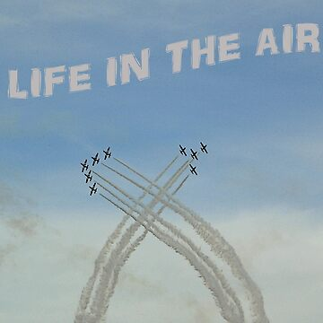 LIFE IN THE AIR by lionking82