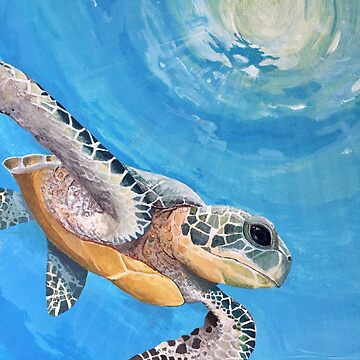 Sea turtle by lotusblossom