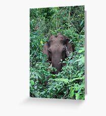 Hidden elephant  Greeting Card