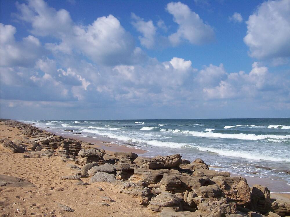 Coastline near St. Augustine by AshleeQ