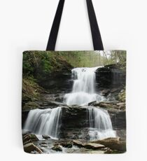 Ricketts Glen Tuscarora Falls Tote Bag