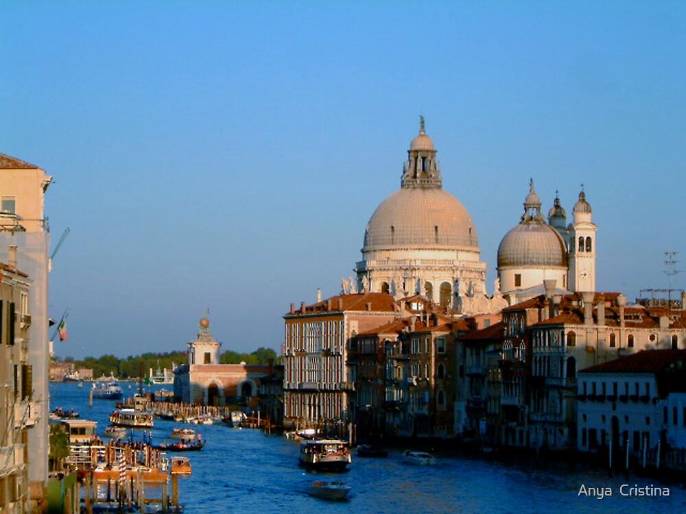 Santa Maria della Salute and the Grand Canal by Anya  Cristina