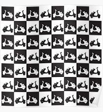 Mod checker black and white vespa lambretta scooter Poster