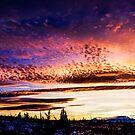 Sunset 2015-1 by Richard Bozarth