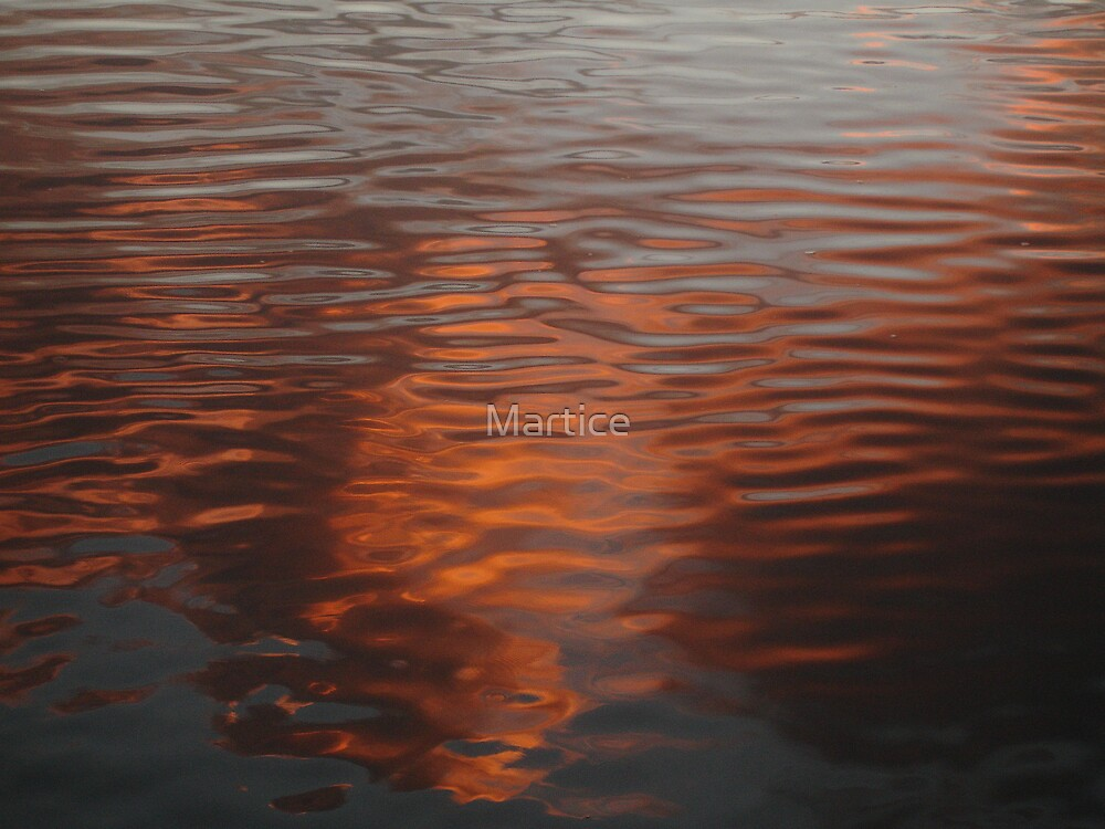 Red Reflections by Martice