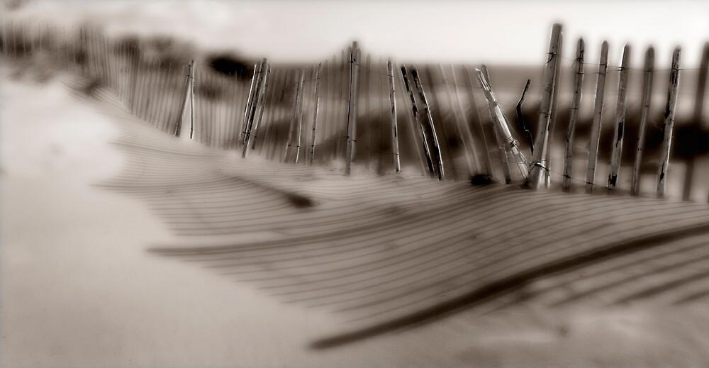 Coastal Fence by PaulHattam