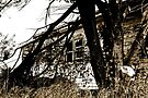Broken Window in Sepia by Evita