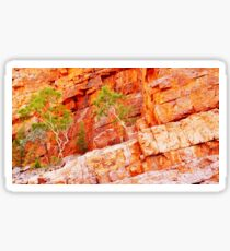Colours of Ormiston Gorge, Northern Territory #2 Sticker