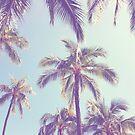Palm by QuartzTiger