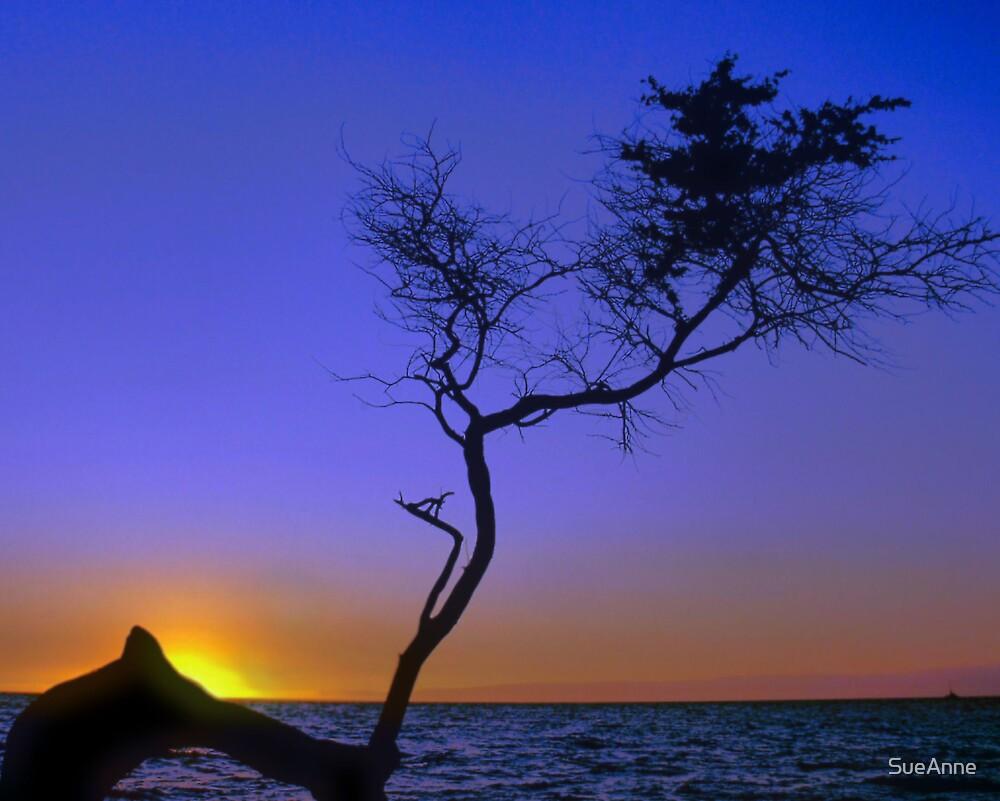 Hawaiian Blues by SueAnne