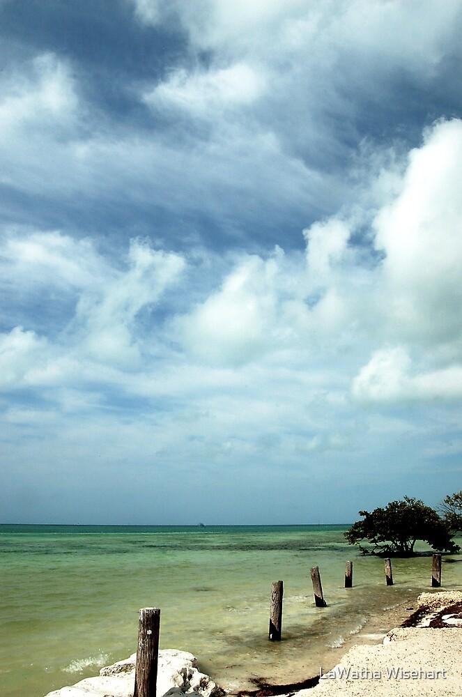 Solitary Paradise by LaWatha Wisehart