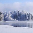 « One Beautiful Sunday » par Päivi  Valkonen