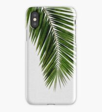Palm Leaf Green I iPhone Case/Skin