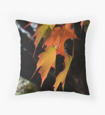 Sugar Maple Leaves, Back-lit Throw Pillow