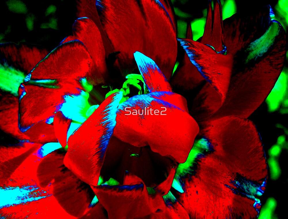 Dream flower(RED). by Saulite2