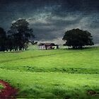 A stormy day in Dorrigo by Clare Colins
