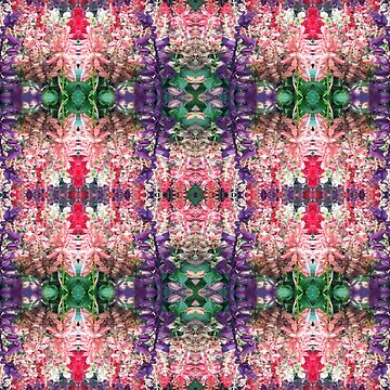 Salvia Medley by Feraloidies