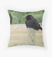 Feathered Shadows Throw Pillow