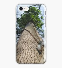 Giant Tree From Below iPhone Case/Skin
