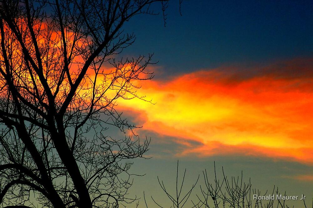 the sky burns by Veronica Maur'er