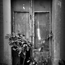 Vintage door by gabriellaksz