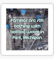 Flint Sticker