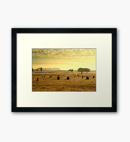 Dry Pasture,Mt Duneed Framed Print