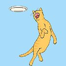 Frisbee Cat by murrayjodie