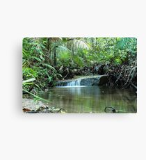 Backyard scenes Canvas Print