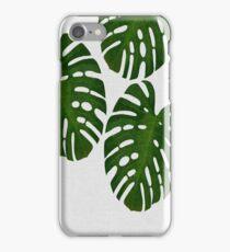 Monstera Leaf Green III iPhone Case/Skin