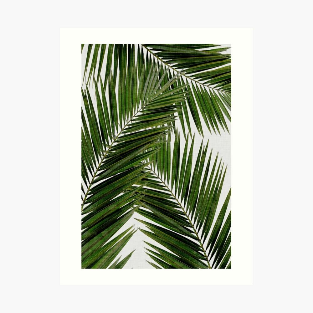 Palm Leaf Green II Lámina artística