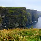The Cliffs of Moher by annalisa bianchetti