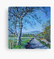 Down a Different Road Canvas Print