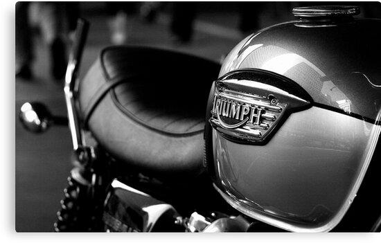 Triumph Motorbike by Elana Bailey