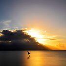 Sunset.....Port Douglas by Imi Koetz