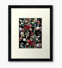 Floral and Birds IX Framed Print