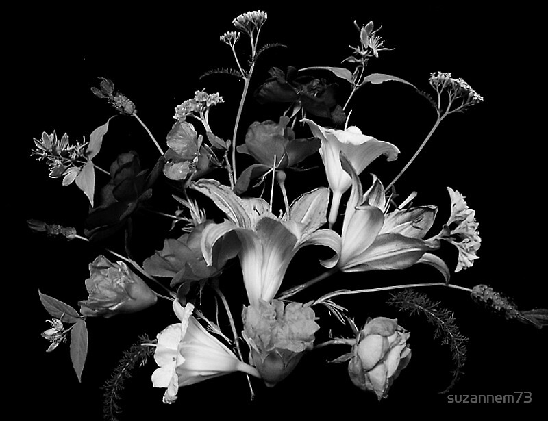 Mixed Bouquet in Black & White by suzannem73