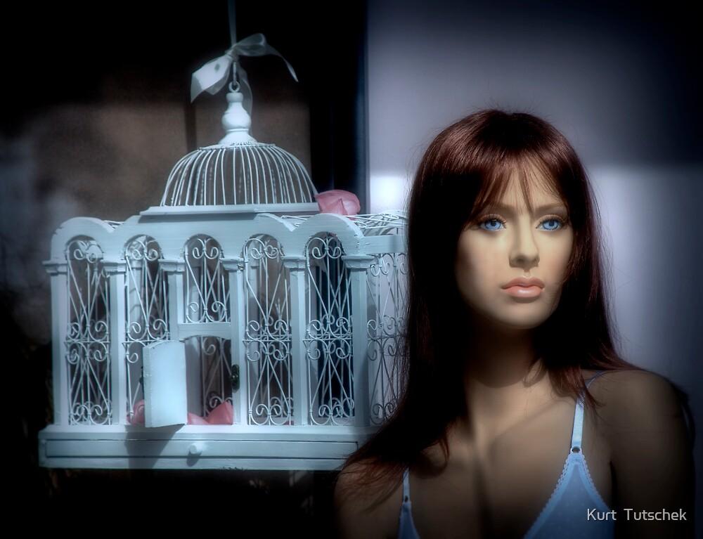 The cage by Kurt  Tutschek