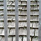 Cedar shingles and wooden railings by Shulie1