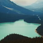 Peyto Lake by algill
