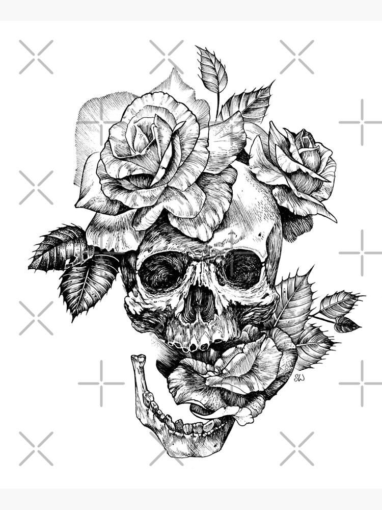 Cráneo y rosas de saraknid