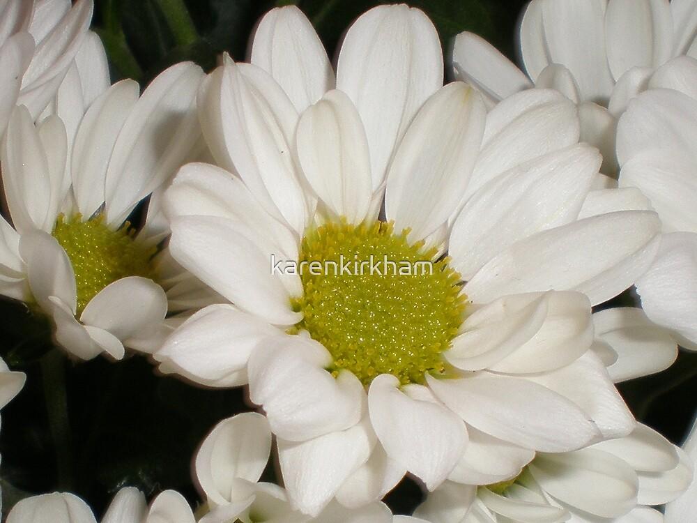 Daisy 2 by karenkirkham