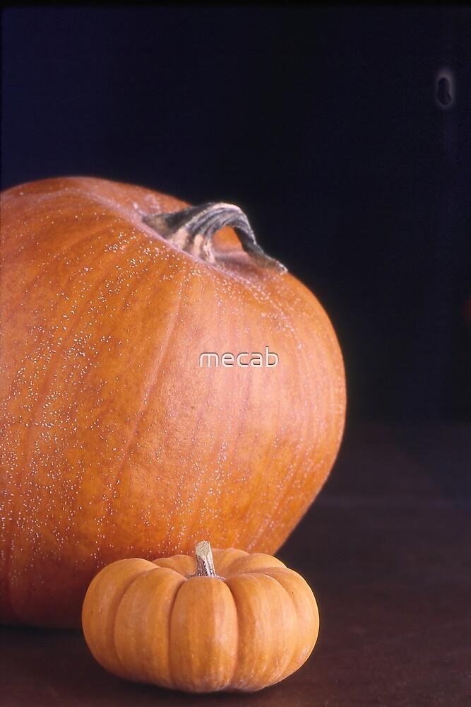 Pumpkin Pair by mecab
