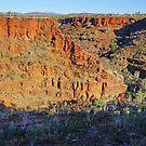 Dales Gorge by Harry Oldmeadow