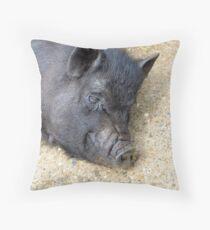Sunbathing porker Throw Pillow
