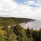 The Bay of Fundy by Mark Prior