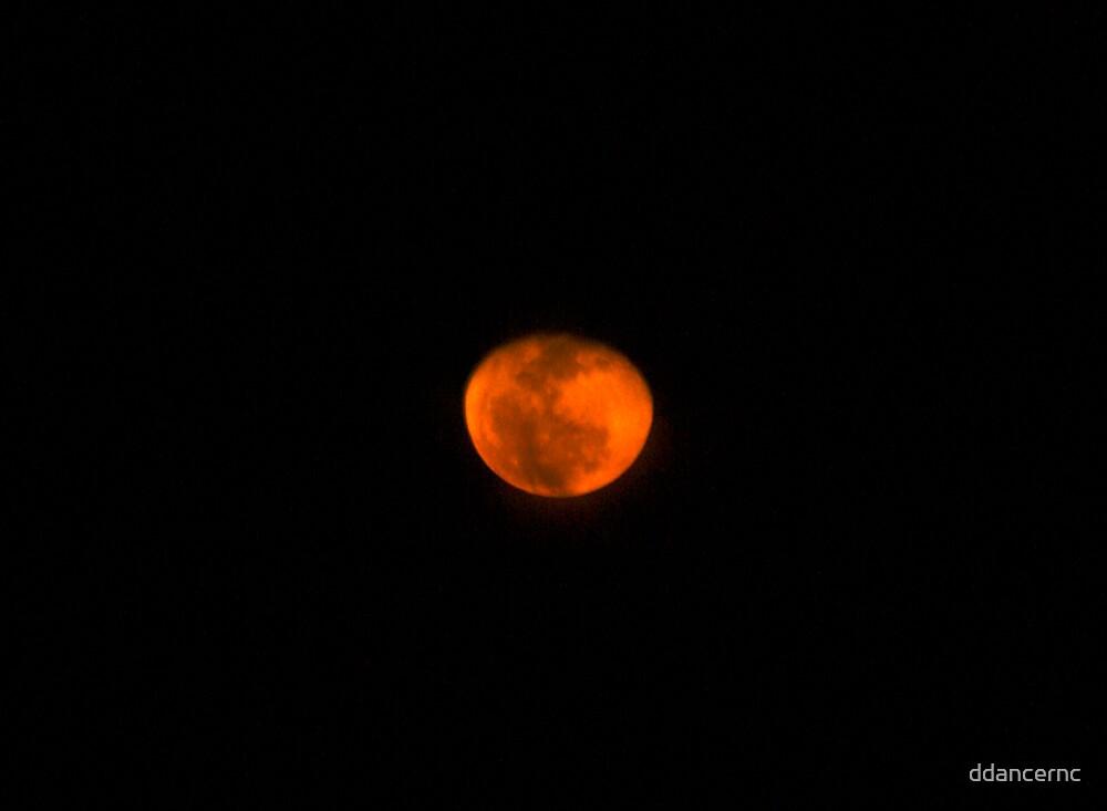 Red Moon by ddancernc