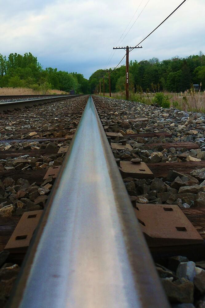 Follow my tracks by dreckenschill