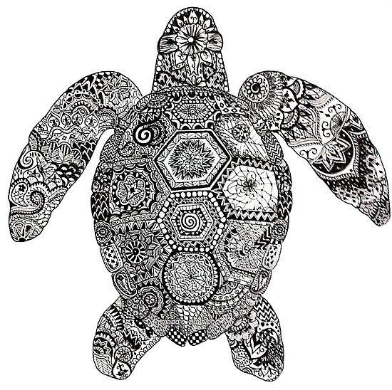 Quot Zentangle Turtle Quot Poster By Maddiesdrawings Redbubble